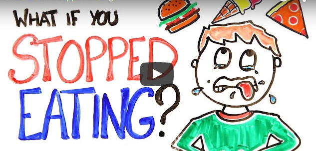 what happens if you stopped eating?
