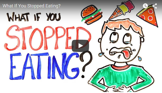 what happens if you stop eating? Share this video to help educate people. Most don't have a clue what happen if they stop eating.