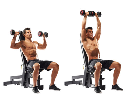 "Résultat de recherche d'images pour ""Back Supported Shoulder Press"""