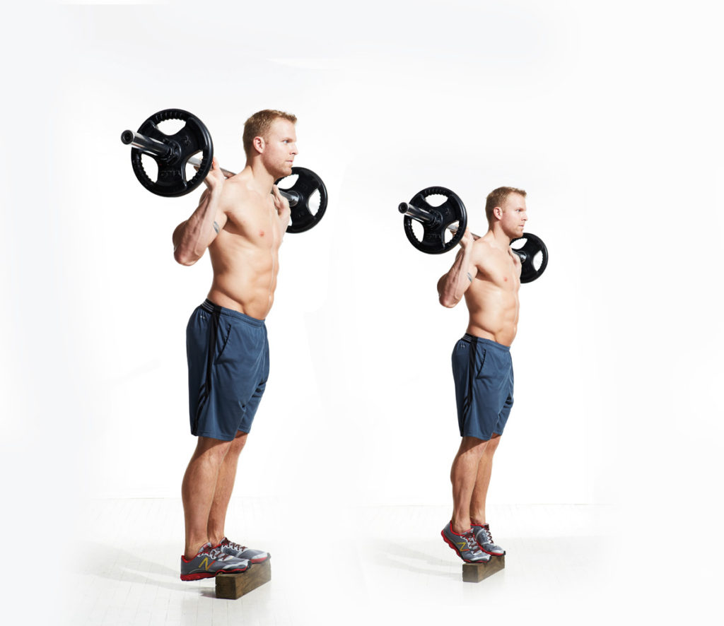 Seated Barbell Shoulder Press Vs Standing: » Calf Raises / Seated & Standing
