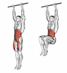 Image result for knee raises